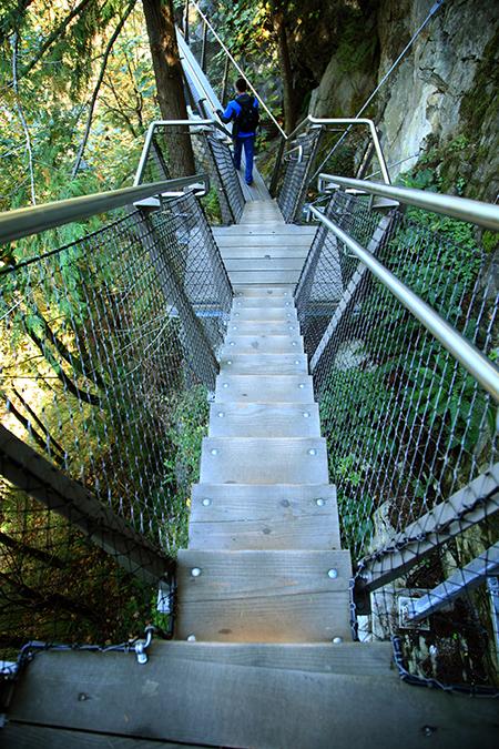 Capilano Suspension Bridge Treetop Adventure And